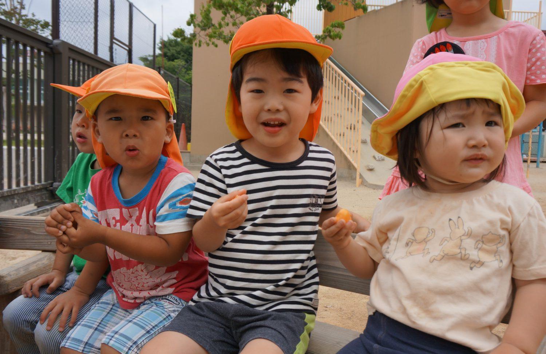 子どもがびわの実を食べている